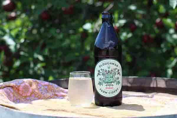 Ploughman Cider Taproom in Gettysburg, PA