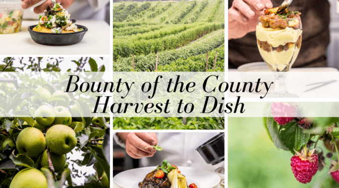 Bounty of the County – Harvest to Dish