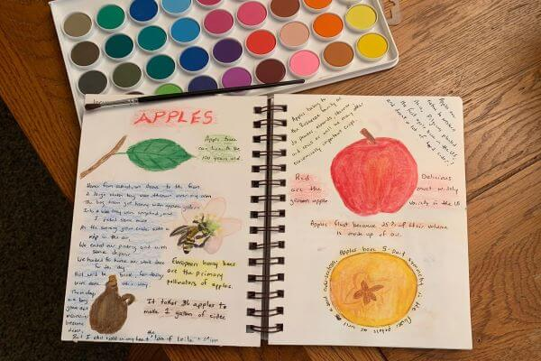 journal page on apples