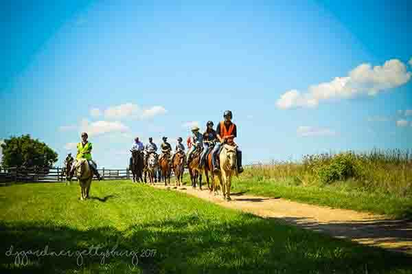 Horse Tours of Gettysburg