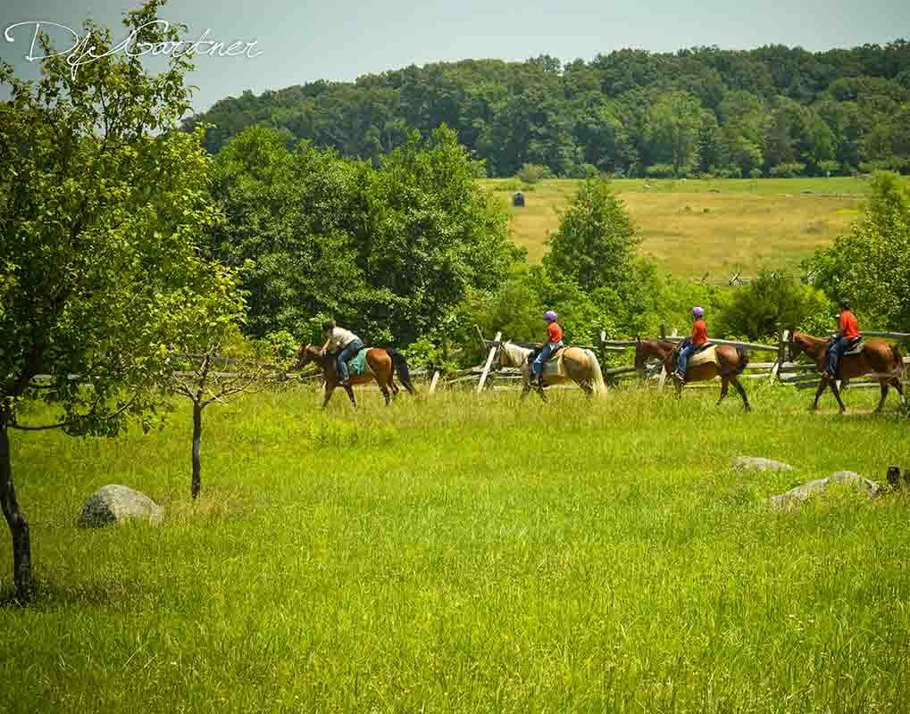 Boyscout Troop 37 Horseback Tour June 17,2016