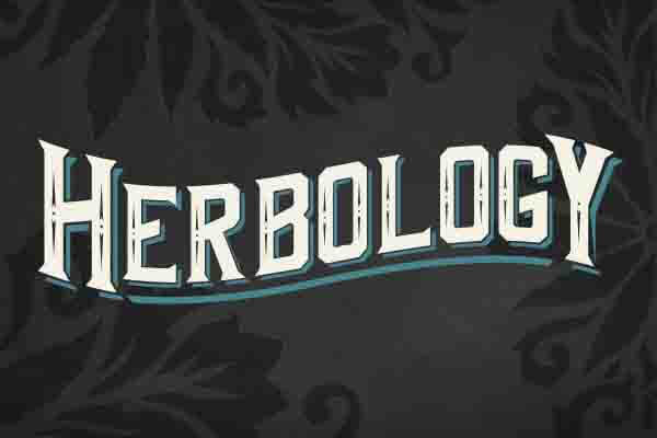 Herbology in Gettysburg, PA