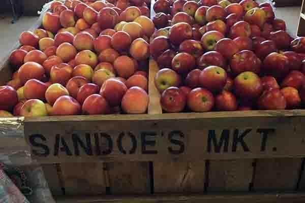 Sandoe's Fruit Market
