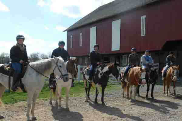 More information about Cornerstone Farm Horseback Tours