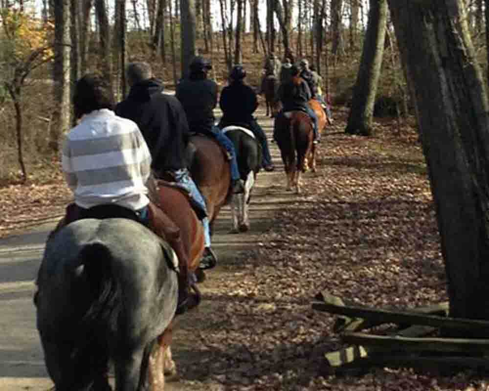 hickory-hollow-horse-tours-m