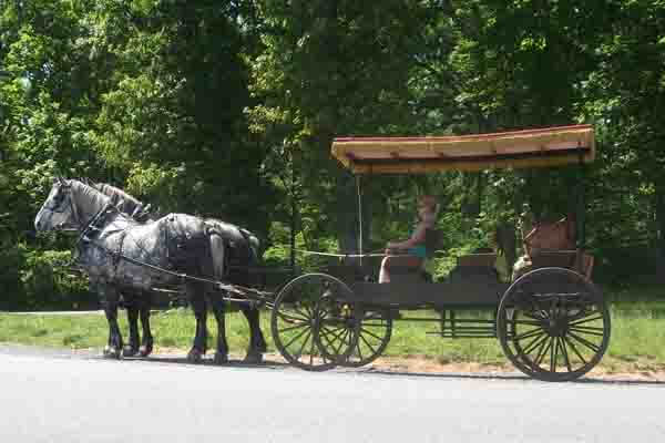 Victorian Carriage Company in Gettysburg, PA